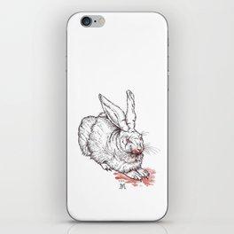 the beast of caerbannog iPhone Skin