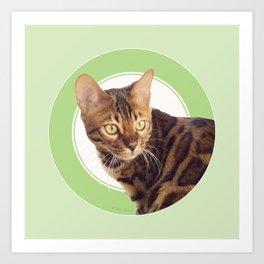 Boris the cat - Boris le chat Art Print