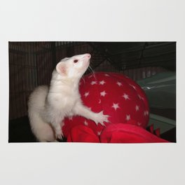 The Ivory Ferret and the Starry Red Bouncy House Rug