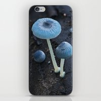 pixies iPhone & iPod Skins featuring Pixies Parasol (Mycena interrupta) by Clusterpod