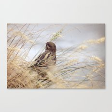 Be as a Bird Canvas Print