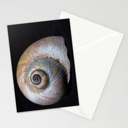 Moon snail sea shell 2863 Stationery Cards