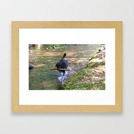 happy dog ridley Framed Art Print