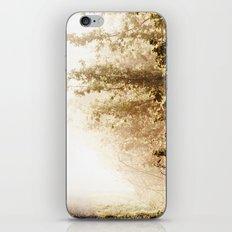 Pathes iPhone & iPod Skin