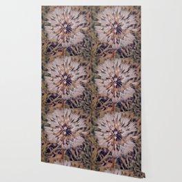 Dew On Dandelion Wallpaper