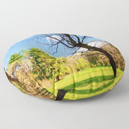 Spring In The Forest Floor Pillow