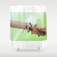 beetle Shower Curtains featuring Beetle by Marcel Derweduwen