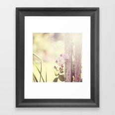 Rosey day Framed Art Print