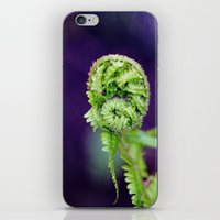 fern iPhone & iPod Skins featuring Fern by LoRo  Art & Pictures