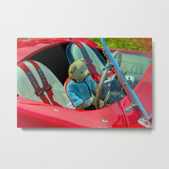 BEARY NICE CAR Metal Print