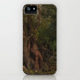 mystic willow iPhone Case