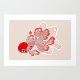 Red cap Oranda Art Print