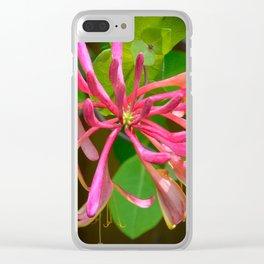 Honeysuckle by Teresa Thompson Clear iPhone Case