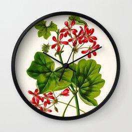 Joy Leaved Geranium Vintage Scientific Botanical Flower Illustration Hand Drawn Art Wall Clock
