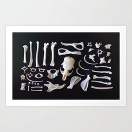 Found Parts Art Print