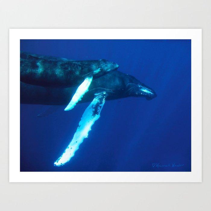 Humpback Whale and her Calf Art Print