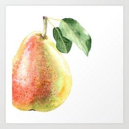 Fall Harvest. Pear. Watercolor painting. Art Print