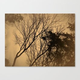 Swaying trees Canvas Print
