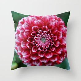 Dalia2 Throw Pillow