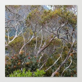 Only Natural Canvas Print