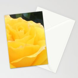 My Yellow Rose Stationery Cards