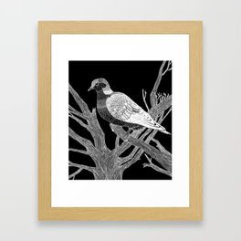 Inverted Turtledove Framed Art Print