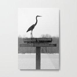 Majestic Heron Metal Print
