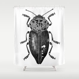 Beetle 11 Shower Curtain