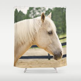 Sweet Eyes Domino Shower Curtain