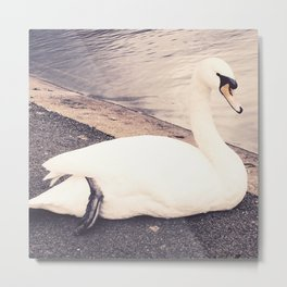 The Swan Metal Print