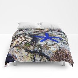 Starfish on the Reef Comforters