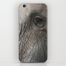 Elephant Detail iPhone Skin