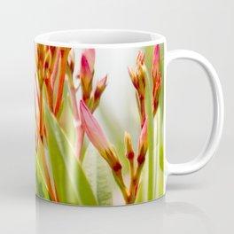 Nature photography Flower bud bloom I Coffee Mug