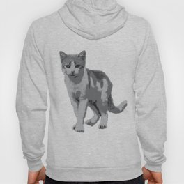 Grey room tiger Hoody