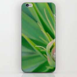 agave abstract iPhone Skin