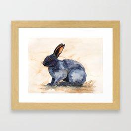 BUNNY#6 Framed Art Print