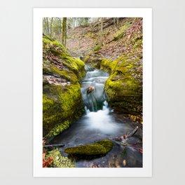 Spring Stream in the Ozarks - Northwest Arkansas Art Print