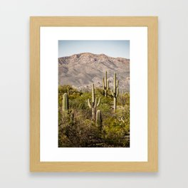 Scenes from Arizona, No. 2 Framed Art Print