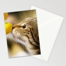 Tabby and the Flower Stationery Cards