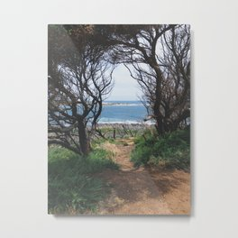 Hidden Path  Metal Print
