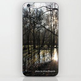 shadows & reflections iPhone Skin
