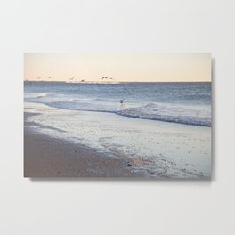 Birdy Beach  Metal Print
