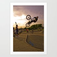 jay fleck Art Prints featuring Jay by Mike Shaheen