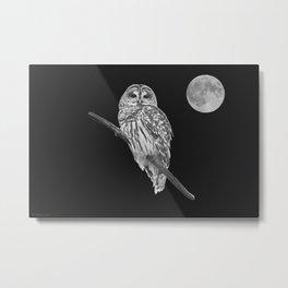 Owl, See the Moon (bw) Metal Print