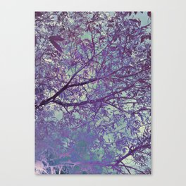 forest 2 #forest #tree Canvas Print
