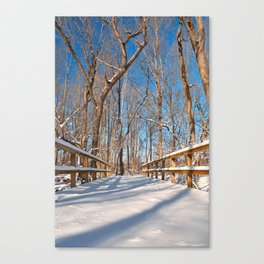 Susquehanna Winter Forest Bridge Canvas Print