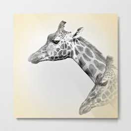 Giraffes With A Hint Of Colour Metal Print