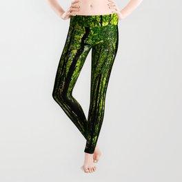 Green breeze Leggings