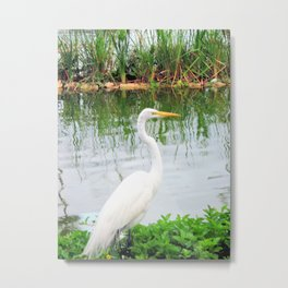 The Great White Egret:) (pointillism) | Large White Bird | Nature Photography Metal Print