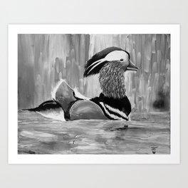 Mandarin Duck at Night Enjoying the Reflection on the Water Art Print